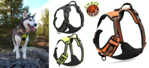 Mighty Paw Sport Harness