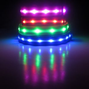 Blazin' Bison Safety LED Collar