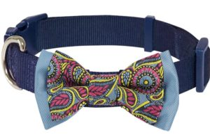 Blueberry Pet Soft and Comfortable Paisley Flower Print Collar