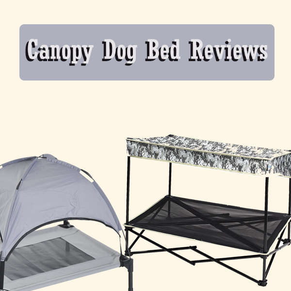 Canopy Dog Bed Review