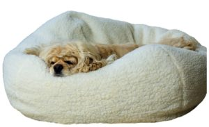 Carolina Pet Co. Sherpa Puff Ball Bed