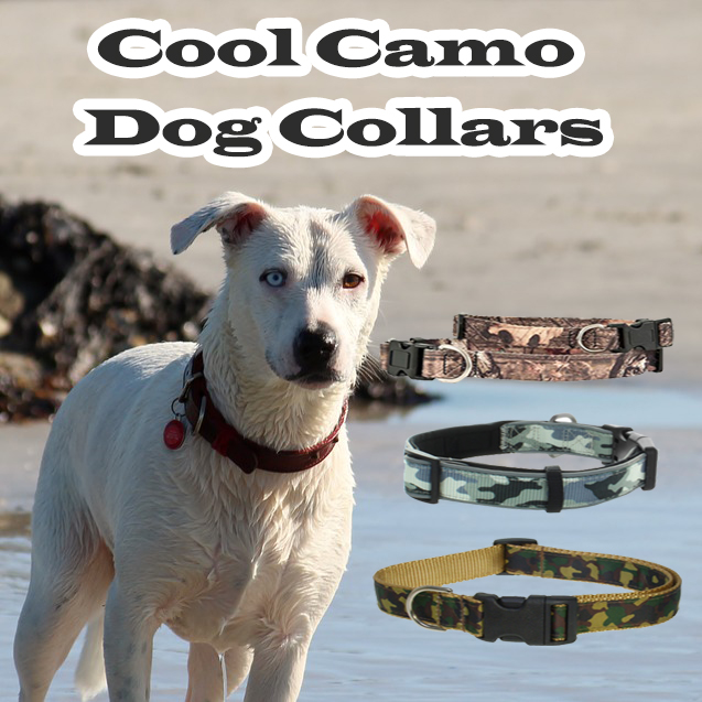 Cool Camo Dog Collars