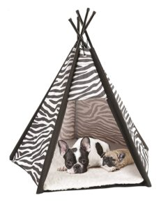 Etna Portable Lightweight Teepee Pet Tent
