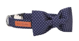 Lionet Paws Collar with Bowtie