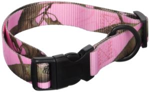 OmniPet Realtree APC Collar