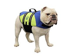Paws Abroad Neoprene Doggy Life Jacket