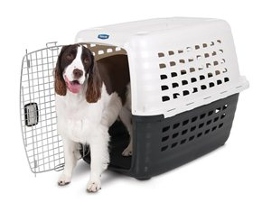 Petmate Compass Plastic Kennel With Chrome Door