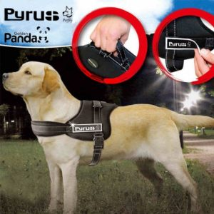 Pyrus Dog Harness K8