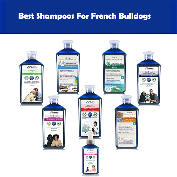 Shampoos For French Bulldogs