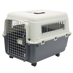 SportPet Designs Plastic Kennel