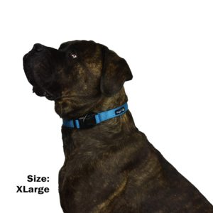 Waggin Tails Classic Comfort Collar