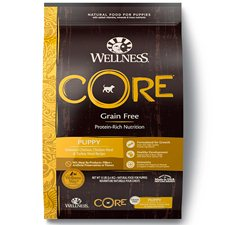 Wellness Core Natural Puppy Large Breed